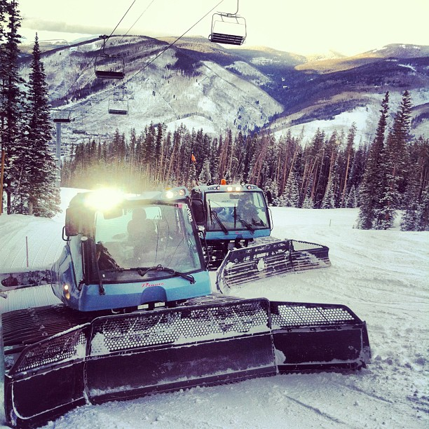 Vail daytime grooming